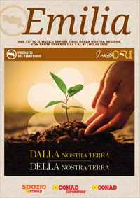 Volantino CONAD Market  (bilingue)